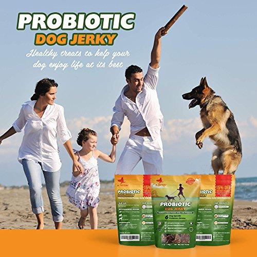 Healthy Dog Treats Probiotic Jerky Probiotics