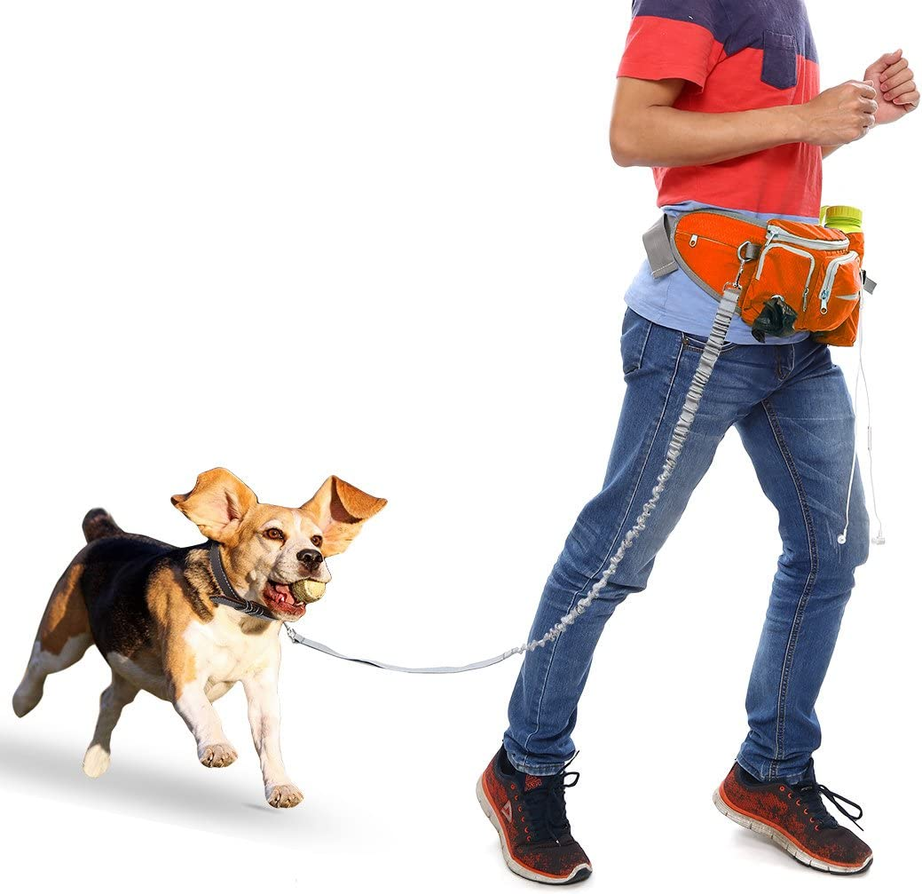 Hands Free Training Waist Bag for Camping Climbing Travel Cycling and Dog Walking Bottle Holder Build-in Poop Bag Dispenser Pouch Adjustable Waist Belt Anywow Dog Treat Training Pouch Bag