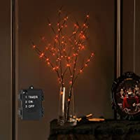 LITBLOOM Pre Lit Halloween Tree Branches Battery Operated with Timer, Lighted Black Twig Branches with 100 Orange LED…