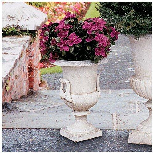 Design Toscano Chteau Elaine Authentic Iron Urn - Medium ()