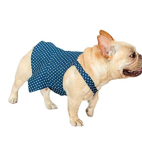 Amazon.com: QBLEEV - Vestido para perro, vestido para ...
