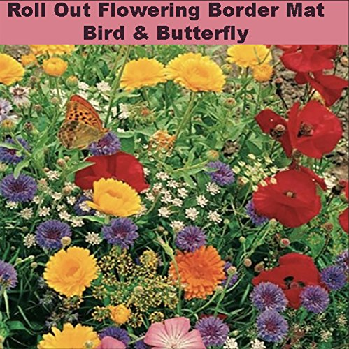 Enroot Roll and Grow Flowering Border Mat-Bird & Butterfly - (8 sq. ()