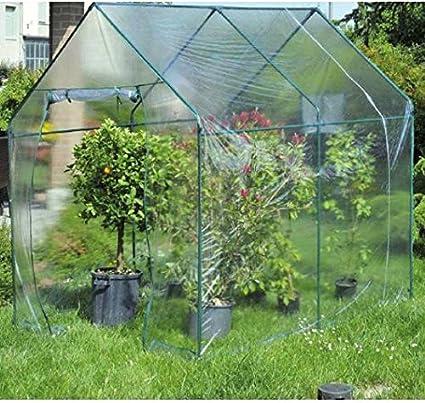 Invernadero jardín transparente: Amazon.es: Jardín