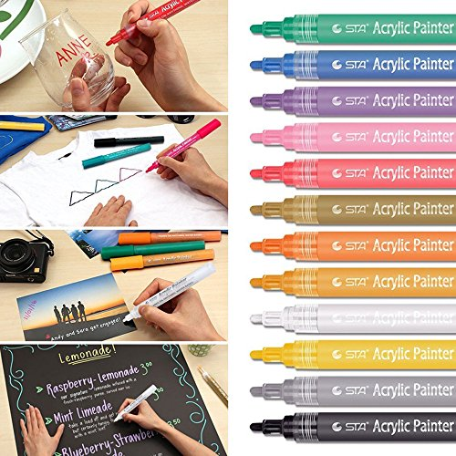 ViShow Acrylic Paint Marker Pens,Set of 12 Colors Markers Water Based Paint Pen for Rock Painting,Canvas,Photo Album,DIY Craft,School Project,Glass,Ceramic,Wood,Metal (Multicolor)