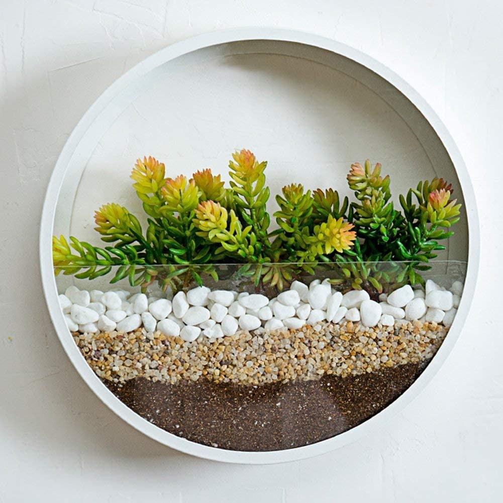 """SHE'S HOME Round Glass Wall Planter, Indoor Decorative Contemporary Morden Circle Iron Vase for Herb,Small Cactus for Room Decor, 10"""" H, White"""