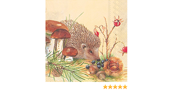 Nosy Little Hedgehog Paper Napkins 20-Pack Lunch BBQ Party Disposable Serviettes