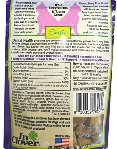 In-Clover-Inc-Smile-for-Dental-Health-for-Cats-21-oz