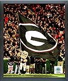 Georgia Bulldogs NCAA Team Mascot Photo (Size: 17'' x 21'') Framed