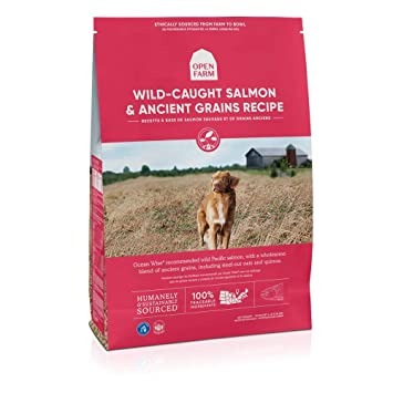 Amazon.com: Open Farm Wild Caught Salmon and Ancient Grains ...