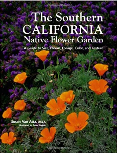 Southern California Native Flower Garden The A Guide To Size
