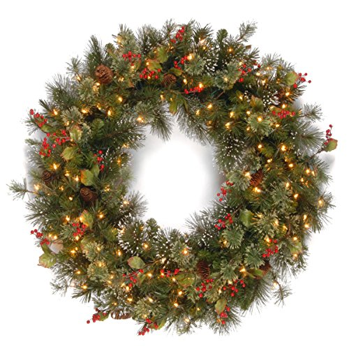 National Tree 48 Inch Wintry Pine Wreath with Cones, Red Berries, Snowflakes and 200 Clear Lights (WP1-300-48W) (Pre 48 Wreath Lit Outdoor)