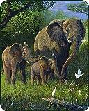 Elephants Medium Weight Faux Fur Blanket
