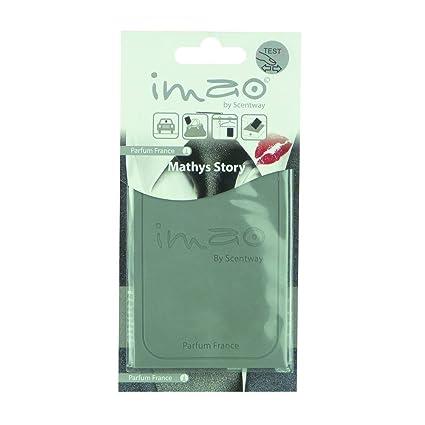 Amazon.es: Imao 1710858 Ambientador en tarjeta, gris