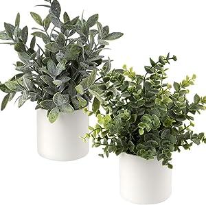 Fake Plants, Artificial Potted Plants Mini Faux Plants Plastic Eucalyptus Rosemary Greenery Indoor Plant in Ceramics Pots Decor for Home Office Desk Bathroom Shelf Centerpiece Decoration