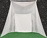 Cimarron Sports Training Aids Super Swing Master Golf Net and Frame