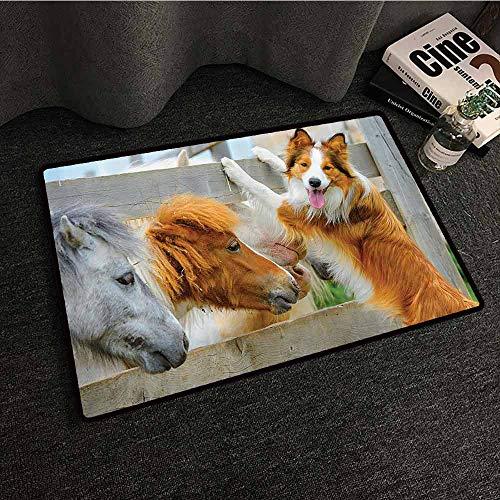 Farmhouse Decor Collection Interior Door mat Pony and Border Collie Dog are Dating Friendship Companionship Nature Picture Machine wash/Non-Slip W31 xL47 Cinnamon Grey White