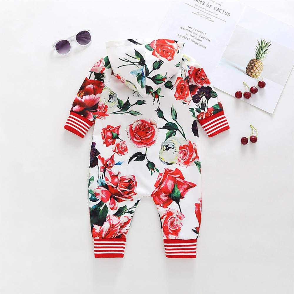 Vinjeely Infant Baby Girls Boys Flower Printing Zipper Caps Romper Fall Clothes 0-24 Months
