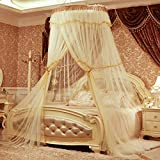HUEHFUEGF Luxury dome princess bed canopy mosquito net, Suspended ceiling Floor Double Insect fly protection screen-C King