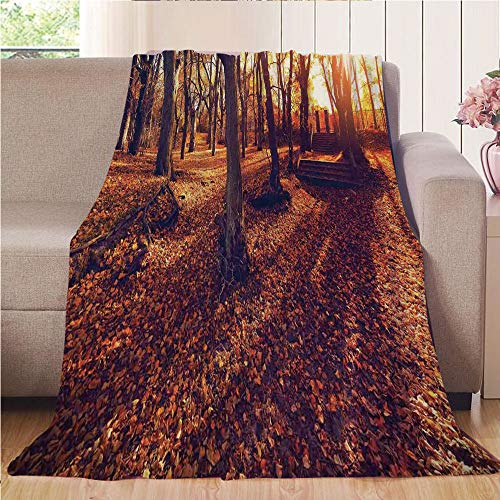 Blanket Comfort Warmth Soft Cozy Air Conditioning Fleece Blanket Perfect for Couch Sofa Or Bed,Farm House Decor,Sunset in Forest Foliage Fallen Leaves Old Trees Relaxing Scenery Picture Print,Yellow B