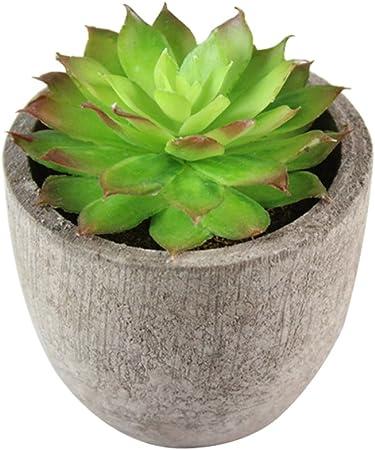 Prokth Plantes Grasses Artificielles En Pot Interieur Ou