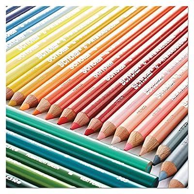 Prismacolor 92805 Scholar Colored Woodcase Pencils 24 Assorted Colors/Set: Toys & Games