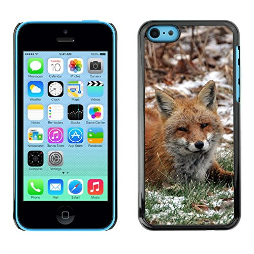 Premio Sottile Slim Cassa Custodia Case Cover Shell // F00002425 animaux sauvages // Apple iPhone 5C