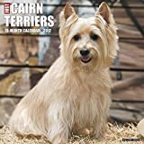 Just Cairn Terriers 2017 Wall Calendar (Dog Breed Calendars)