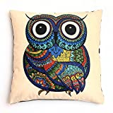 Euler Owl Animal Throw Pillow Case Cushion Cover Home Decorative Solid Square Comfortable Cotton Pillowcase, Handmade with Zipper for Sofa/Couch/Bed/Chair/Car 18 x 18 Inch (45 x 45 cm) (Owl)