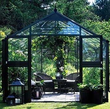 Serre en verre horticole Premium 10,9m² ...