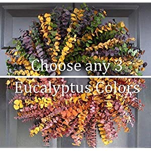 Elegant Holidays Handmade Eucalyptus Wreath, Choice of 3 Colors, Welcome Guests with Decorative Front Door- for Outdoor or Indoor Home Wall Accent Décor All Seasons and Holidays 16-24 inches available 87