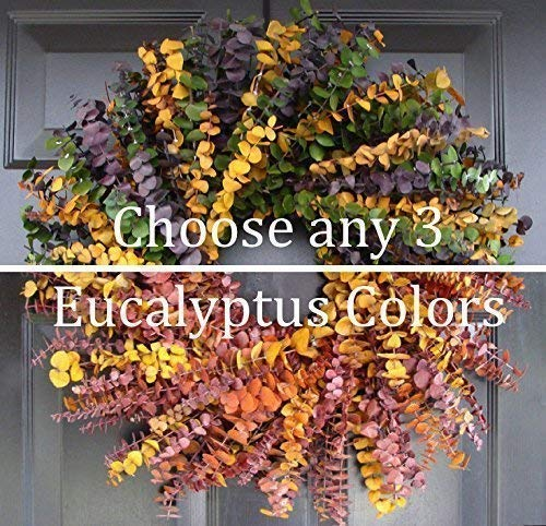 Elegant Holidays Handmade Eucalyptus Wreath, Choice of 3 Colors, Welcome Guests with Decorative Front Door- for Outdoor or Indoor Home Wall Accent Décor All Seasons and Holidays 16-24 inches available]()