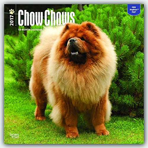 Chow Chows 2017 - 18-Monatskalender mit freier DogDays-App: Original BrownTrout-Kalender [Mehrsprachig] [Kalender] (Wall-Kalender)