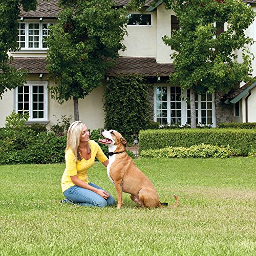 Petsafe Stay And Play Wireless Fence Receiver Collar For