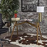 Christopher Knight Home 302149 Camila Mid Century Tempered Glass Desk with Acacia Wood Frame, Dusk Gray/Natural Stained Review