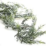 Factory Direct Craft 6 Feet of Snowy Artificial Cedar Pine Garland