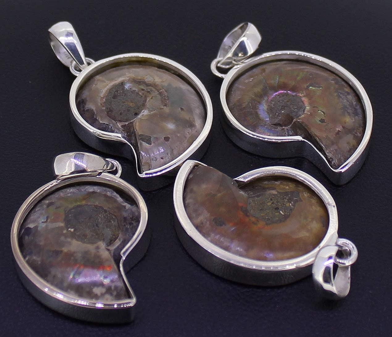 Fossilienschmuck Ammoniten Anh/änger 925 Sterling Silber Versteinerte Fossilien budawi/®