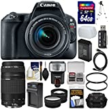 Canon EOS Rebel SL2 Wi-Fi Digital SLR Camera & EF-S 18-55mm IS STM (Black) with 75-300mm III Lens + 64GB Card + Case + Flash + Battery & Charger Kit