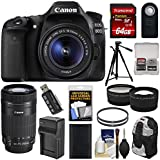 Canon EOS 80D Wi-Fi Digital SLR Camera & EF-S 18-55mm IS STM with 55-250mm IS STM Lens + 64GB + Battery & Charger + Backpack + Tripod + 2 Lens Kit
