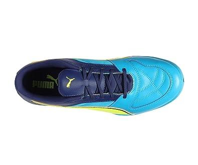 Puma Herren Futsalschuhe Gelb Blau: : Schuhe