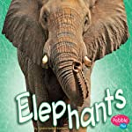 Elephants | Sydnie M. Kleinhenz
