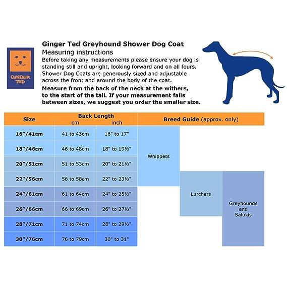 Ginger Ted - Abrigo impermeable para perro (galgo, perro de caza, galgo inglés, etc.): Amazon.es: Productos para mascotas