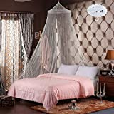 RETON 2 Pcs Jumbo Mosquito Net Elegant Lace Bed Canopy with 2 Hooks, Queen Size, White