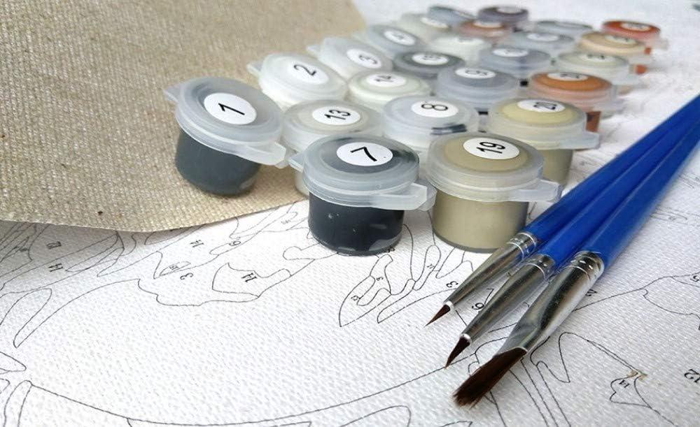 QERTYP DIY Malen nach Zahlen Kits Cat gerahmte DIY DIY /Ölfarbe Malen nach Zahlen auf Leinwand F/ärbung durch Nummern f/ür Wohnkultur kein Frame