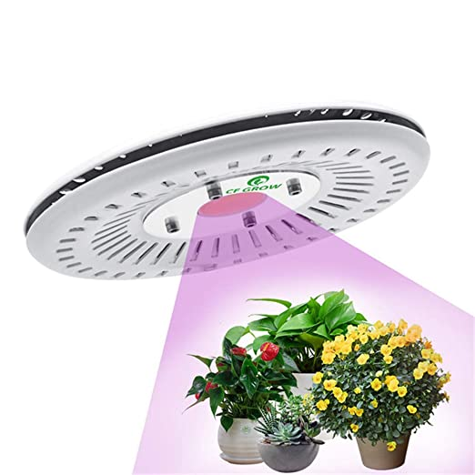 Amazon.com: Cob Led Grow Light Full Spectrum 100w Ufo Led Grow Light Lamp Waterproof Ip67 For Vegetable Flower Indoor Hydroponic Greenhouse Hydroponics ...