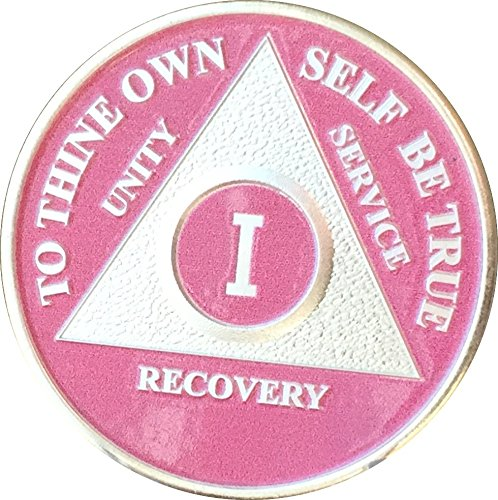 1 Year Pink Silver Plated AA Alcoholics Anonymous Sobriety Medallion Chip & Vinyl Protector One