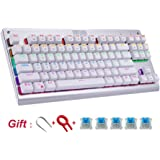 HUO JI E-Element Z-77 Mechanical Gaming Keyboard, Multicolor LED Backlit with DIY Blue Switches,Tenkeyless 87 Keys Anti-Ghosting for Mac PC, White