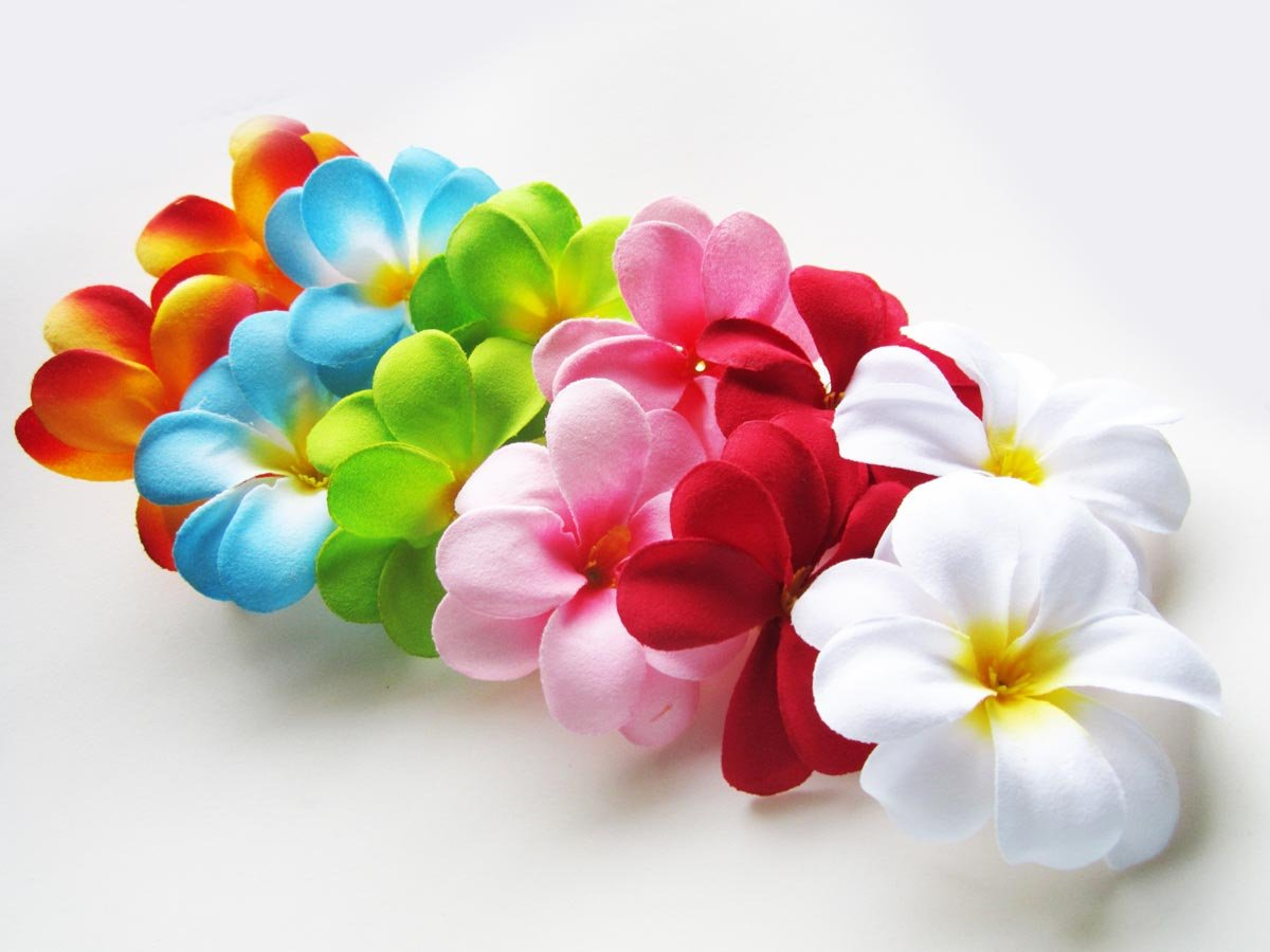 24-Assorted-Hawaiian-Plumeria-Frangipani-Silk-Flower-Heads-3-Artificial-Flowers-Head-Fabric-Floral-Supplies-Wholesale-Lot-for-Wedding-Flowers-Accessories-Make-Bridal-Hair-Clips-Headbands-Dress