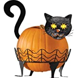 Black Cat Pumpkin Holder With Light Up Eyes - 3 PC