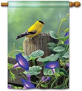 BreezeArt Studio M Goldfinch Perch Decorative Spring Summer Birds Standard House Flag Banner – Premium Quality, 28 x 40 Inches