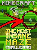Clip: Little Lizard Gaming - The Most Insane Maze Minecraft Challenge!